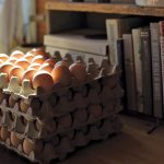 Pallets of eggs are ready for farm gate sales at the Mitchell Family Farm in Mulmur.