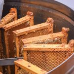 Frames of honey in the extractor yield various honey products which Elzby sells at the Meaford Farmers Market from June to October.