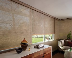Smart shades, like these automated window shades by Hunter Douglas, can be operated from converters or from your smart phone.